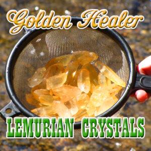 Golden Healer Lemurian Crystals